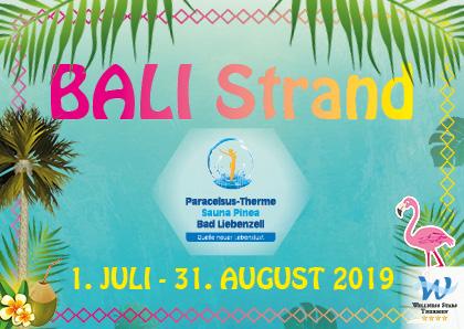 Logo BALI Strand, Palmen, Flamingo, Blätter